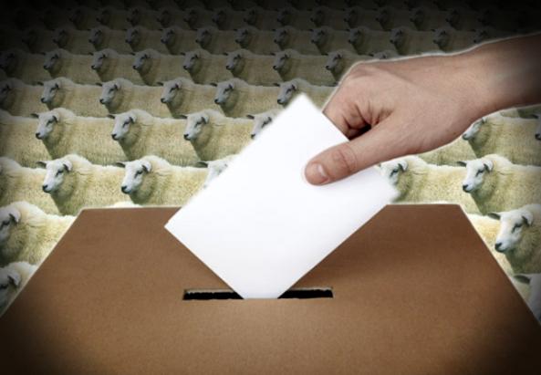 elecciones-en-el-pais-de-los-borregos_00000