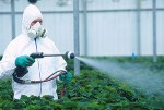 pesticide-spray